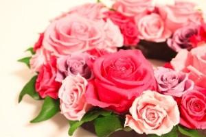 rose_20